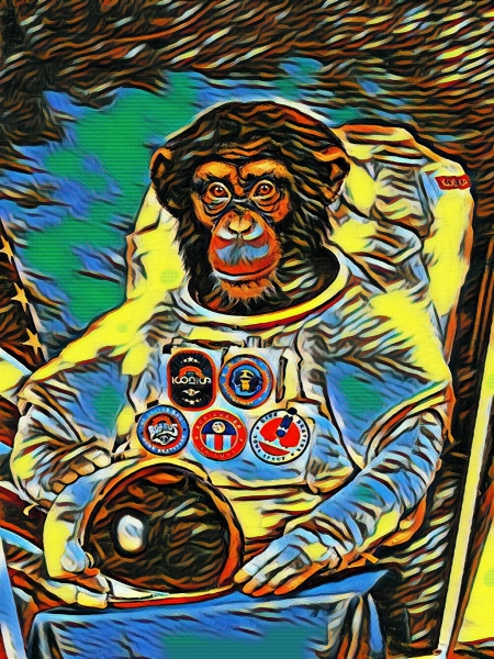 First Ape in Space